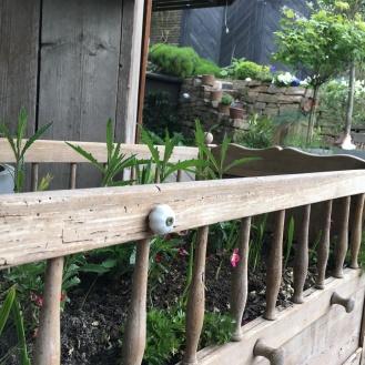 nachdem der Wasserschaden die alte Wiege unbrauchbar gemacht hat, dürfen nun Eisenkraut und Crocosmia in ihr wachsen