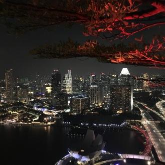 Blick vom Marina Bay Sands