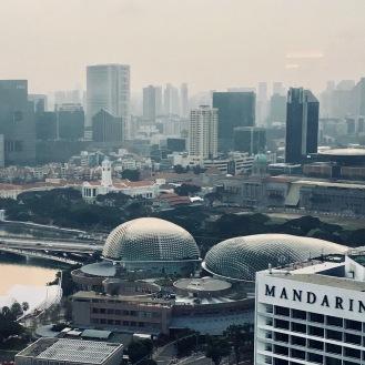 Esplanade (Veranstaltungszentrum) in Anlehnung an eine stachelige Frucht auch Durian genannt