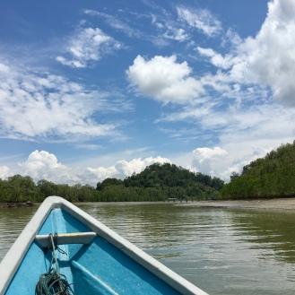 Mangrovenwald vor Dschungel